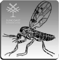 ARE YOU STRUGGLING WITH MIDGES?